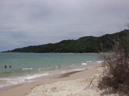 Florianopolis_Praia_Daniela