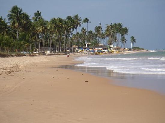 praia-do-forte_Playa